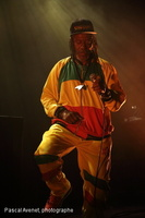20140403_Horace Andy_186