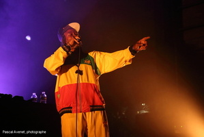 20140403_Horace Andy_206