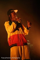 20140403_Horace Andy_236